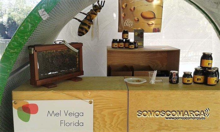 presentacion  Miel Veiga Florida