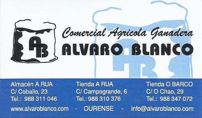 presentacion  Comercial Alvaro Blanco