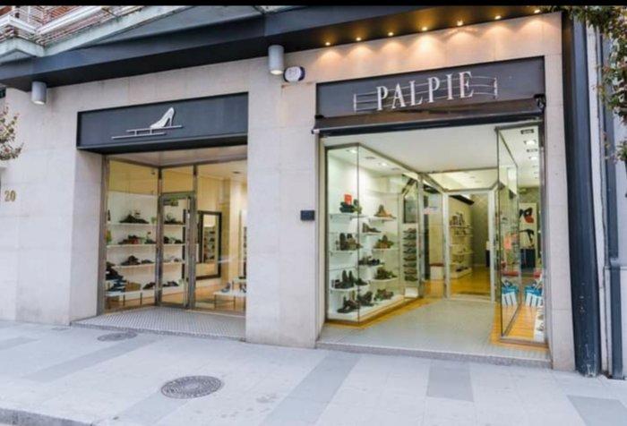 presentacion  Palpie