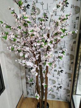 Planta flor de cerezo