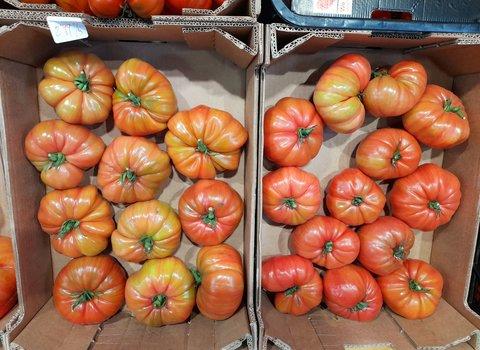 Nuestros tomates