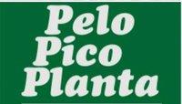 Pelo Pico Planta